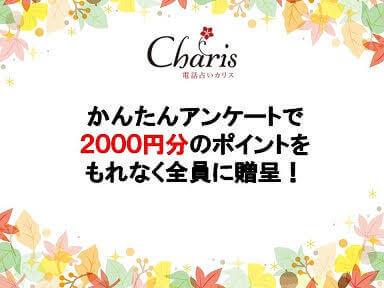 無料|電話占いカリスで2000円分のポイントをもらう方法!