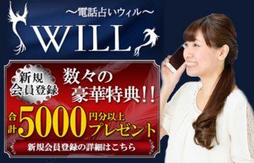 電話占いウィル人気の当たる占い師